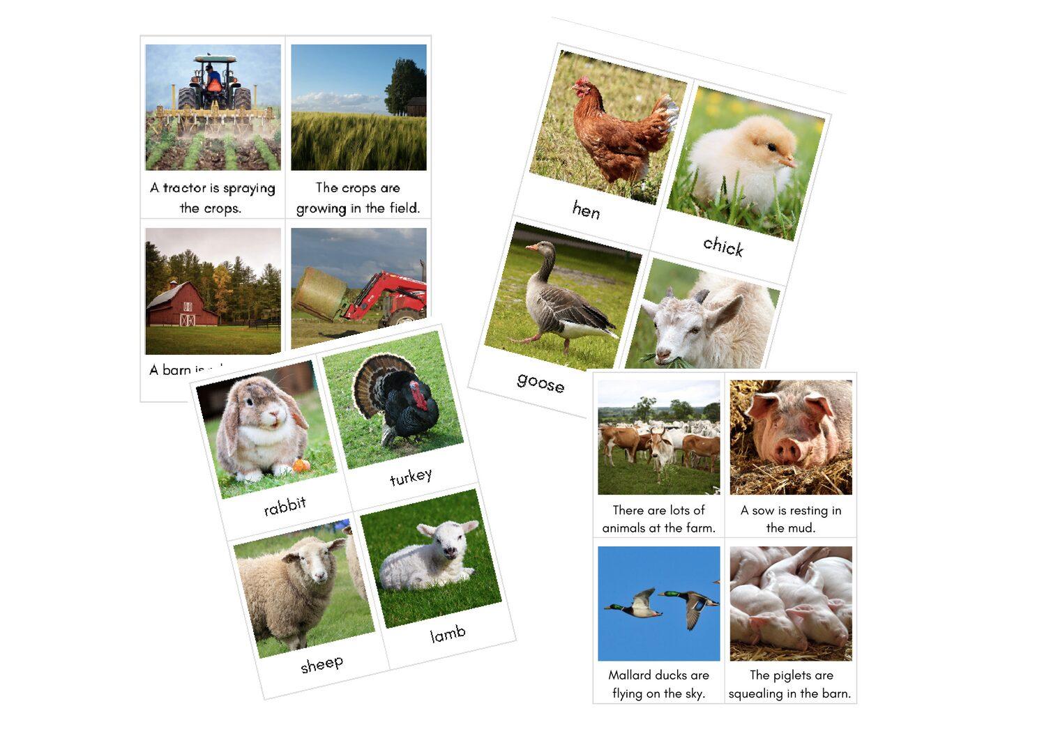 Karty obrazkowe: Farma – ANGIELSKI + POLSKI