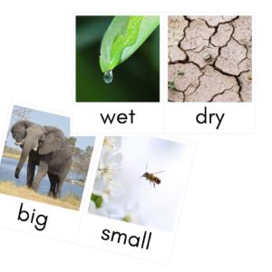 Karty obrazkowe – PRZECIWIEŃSTWA – ANGIELSKI